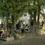 cmentarz Śliwice