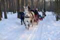 Kulig Wymysłowo Stadnina Paradizo 01.02.2014-10