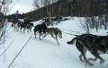 ALTA- Finnmarksløpet 2014 5.03.2014 trening 3