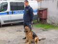 starszy sierżant Tomasz Kozielecki i pies Edyl KPP Tuchola