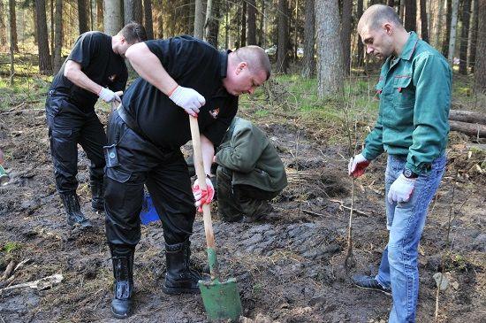 Akcja '1000 drzew na minutę' Nadleśnictwa Trzebciny, Zamrzenica fot. PSP Tuchola 2