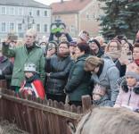 Tuchola Orszak  Trzech Króli 6.01.2018 fot. Andrzej Drelich-217
