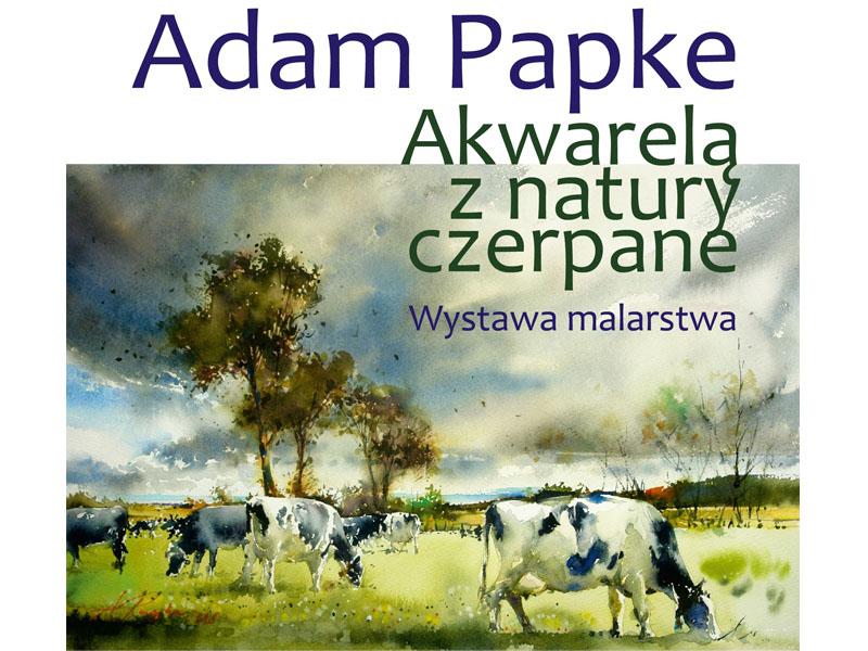 Plakat wernisaż - Adam Papke 18.05.2018 TOK Tuchola
