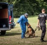 Wicemistrzoowie województwa Sierż. szt. Tomasz Kozielecki i jego pies Aro 08.2018 fot. KPP Tuchola 1