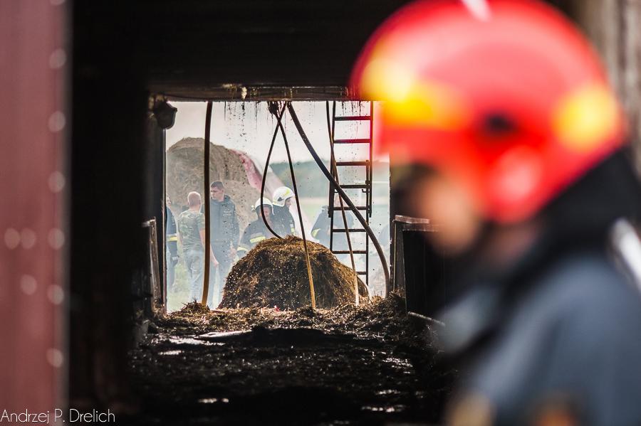 Pożar Kruszka 1.09.2018 fot. Andrzej Drelich-12