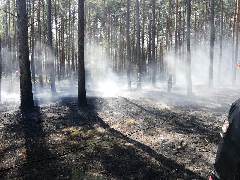 Pożar Leśnictwo Lipce 27.08.2019 fot. Szymon Nowakowski