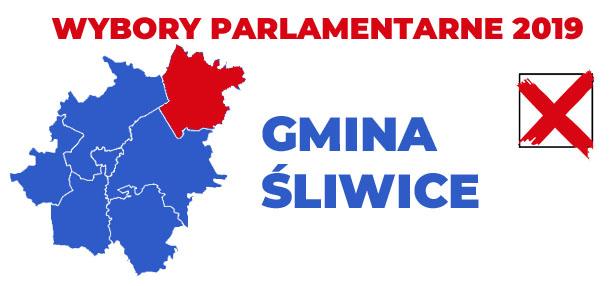 wybory 2019 gmina Śliwice